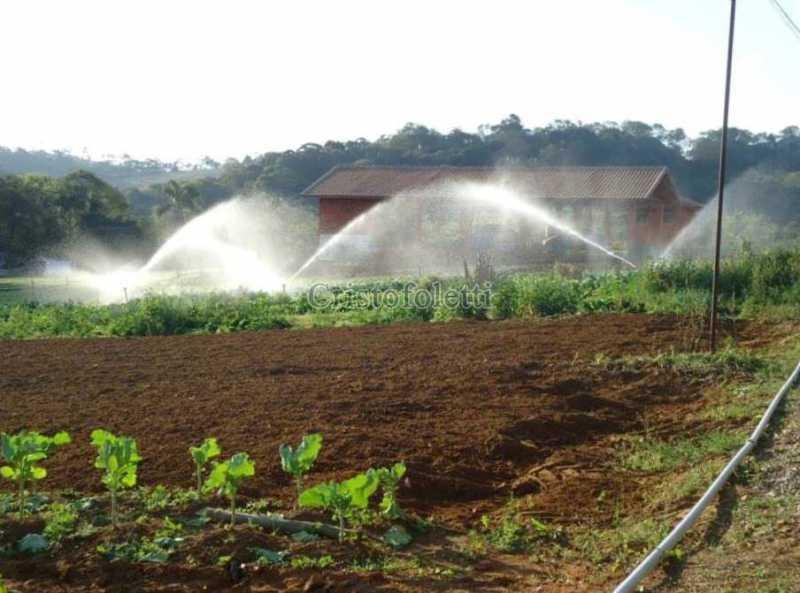 17 - horta irrigada - Sítio 94500m² à venda Estrada do Paiol Grande,Ibiúna,SP - R$ 2.500.000 - ISVE0105 - 19