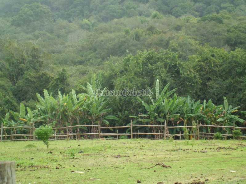 29 - área de camping - Sítio 94500m² à venda Estrada do Paiol Grande,Ibiúna,SP - R$ 2.500.000 - ISVE0105 - 31