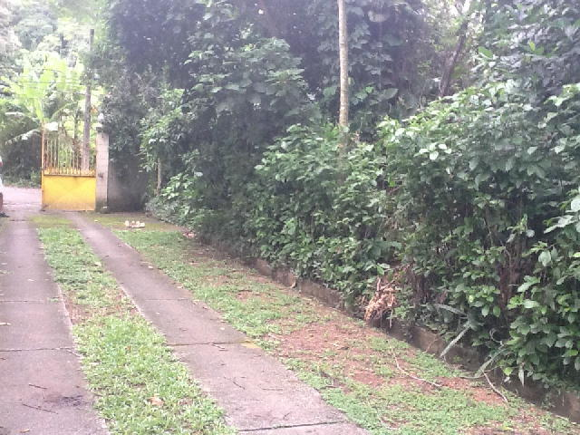 FOTO8 - Terreno 6000m² à venda Vargem Grande, Rio de Janeiro - R$ 3.640.000 - BT00154 - 6