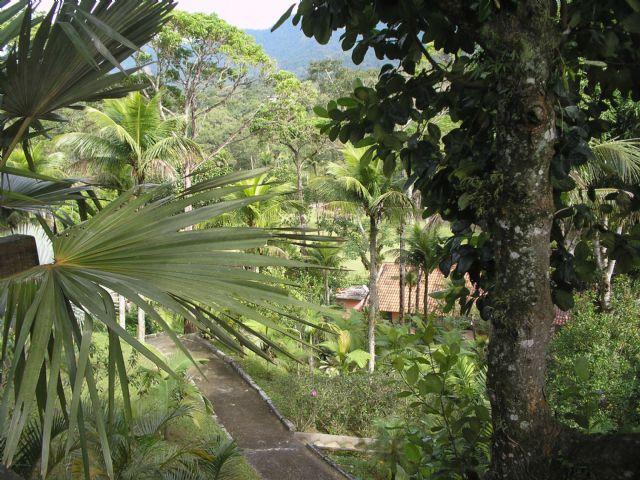 FOTO23 - Sítio 75000m² à venda Rua Lagoa Bonita,Vargem Grande, Rio de Janeiro - R$ 7.000.000 - SVOU36371 - 24