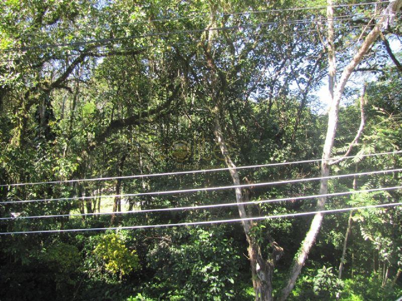 FOTO22 - Casa À Venda no Condomínio Greenwood Park - Itanhangá - Rio de Janeiro - RJ - 70028 - 23