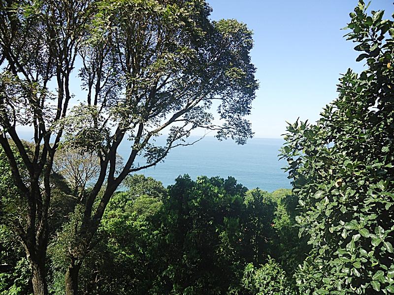 FOTO11 - Casa em Condomínio Iposeira, Rua Iposeira,São Conrado, Rio de Janeiro, RJ À Venda, 5 Quartos, 500m² - 71005 - 12