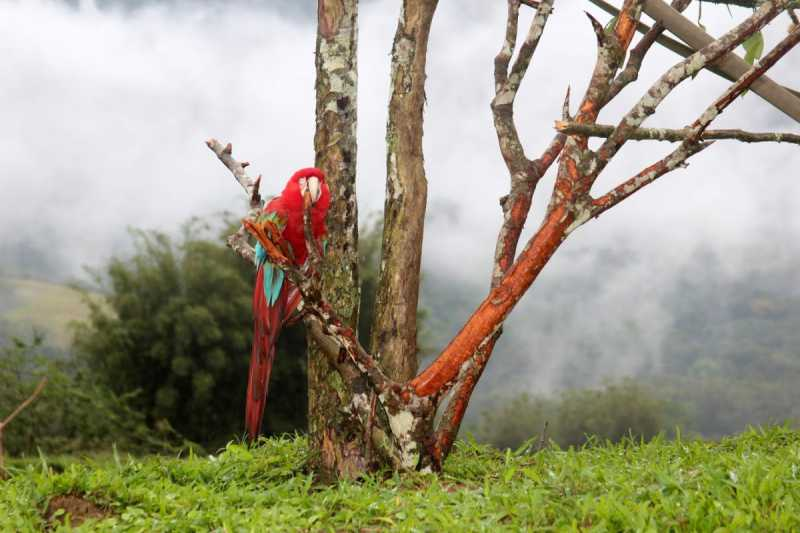 25 - Fachada - Portobello Resort & Safari - 158 - 25