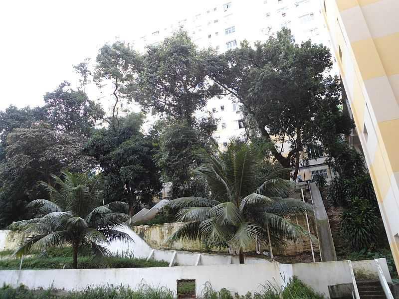 VISTA 01 - Apartamento 2 quartos à venda Catete, IMOBRAS RJ - R$ 460.000 - AP4848 - 24