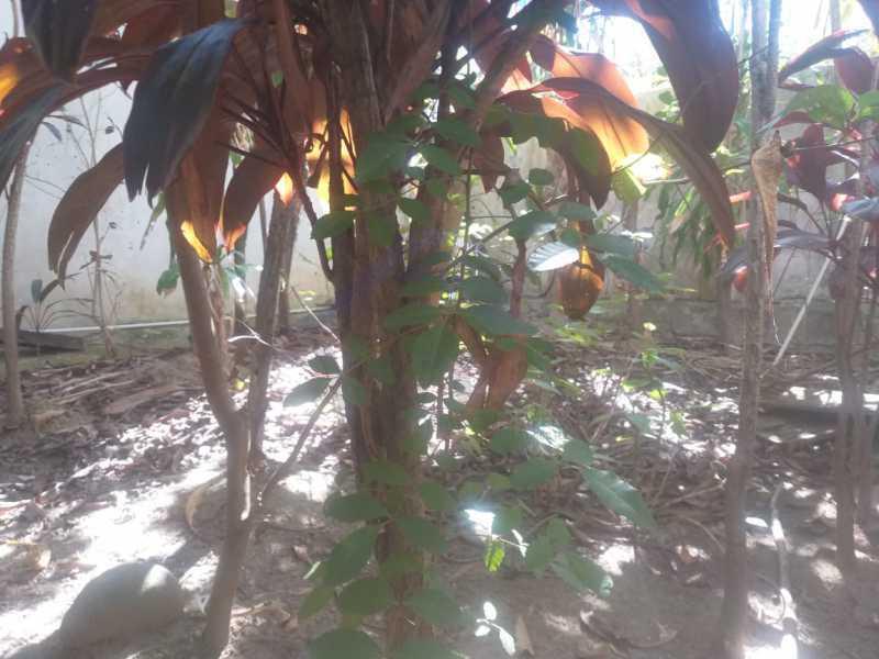 WhatsApp Image 2021-06-02 at 1 - Casa 4 quartos à venda Grajaú, Rio de Janeiro - R$ 680.000 - WCCA40014 - 30