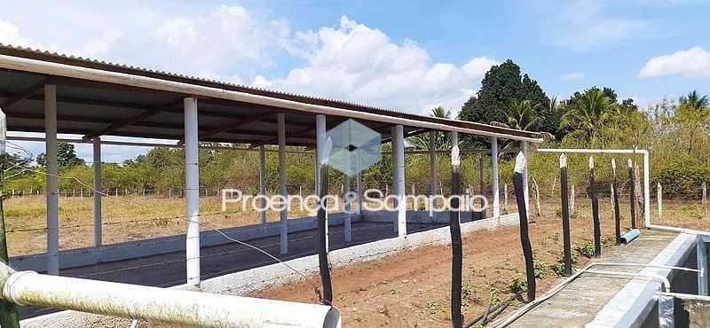 Image0005 - Sítio à venda Conceição do Jacuípe,BA CENTRO - R$ 700.000 - PSSI50001 - 15
