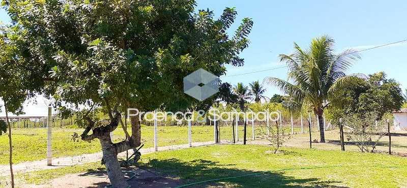 Image0026 - Sítio à venda Conceição do Jacuípe,BA CENTRO - R$ 700.000 - PSSI50001 - 23