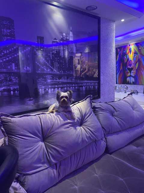 5 - Apartamento 2 quartos à venda Recreio dos Bandeirantes, Rio de Janeiro - R$ 300.000 - SVAP20507 - 6