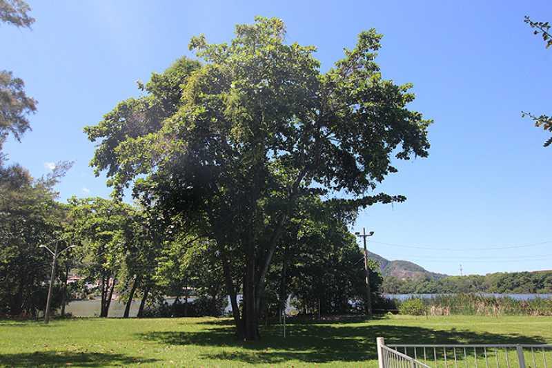 IMG_2884 - Casa em Condominio Barra da Tijuca,Rio de Janeiro,RJ À Venda,6 Quartos,900m² - SVCN60003 - 27