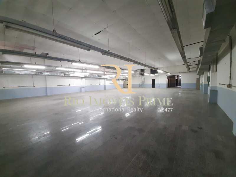 GALPÃO - Prédio 800m² para alugar Rua Pedro Alves,Santo Cristo, Rio de Janeiro - R$ 7.000 - RPPR00004 - 14