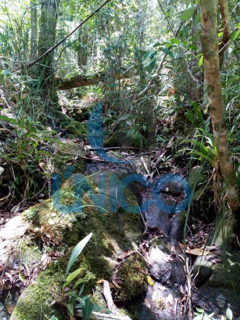 07. - Vendo Sítio no Humaitá com várias nascentes e árvores frutíferas - MTSI00001 - 8
