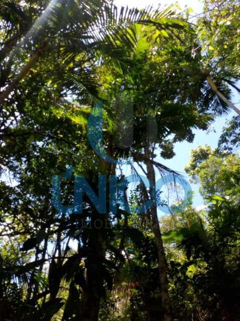 08. - Vendo Sítio no Humaitá com várias nascentes e árvores frutíferas - MTSI00001 - 9