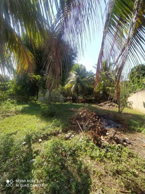 unnamed 3 - Terreno Residencial à venda Chácara Doutor Brum, Muriaé - R$ 675.000 - MTTR00018 - 3