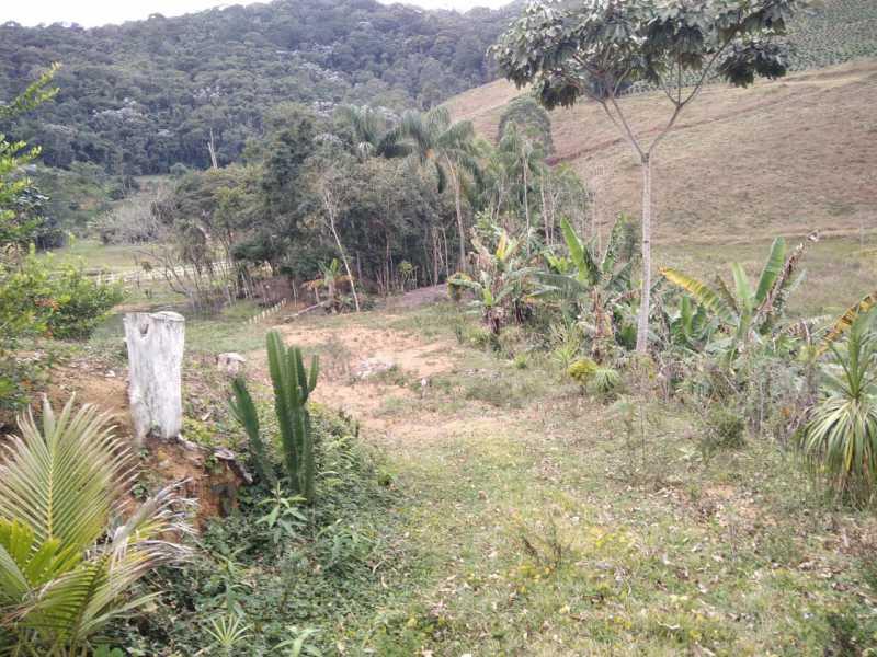unnamed 1 - Chácara 5000m² à venda Ancorado, Rosário da Limeira - R$ 95.000 - MTCH00010 - 3