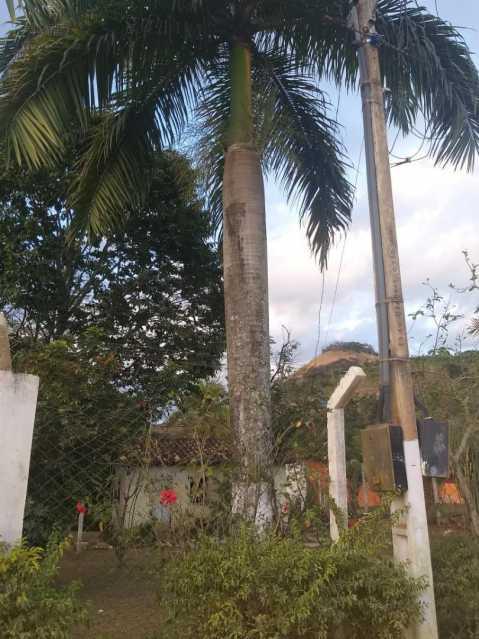 unnamed 19 - Chácara 3000m² à venda Gameleira, Muriaé - R$ 300.000 - MTCH50001 - 10