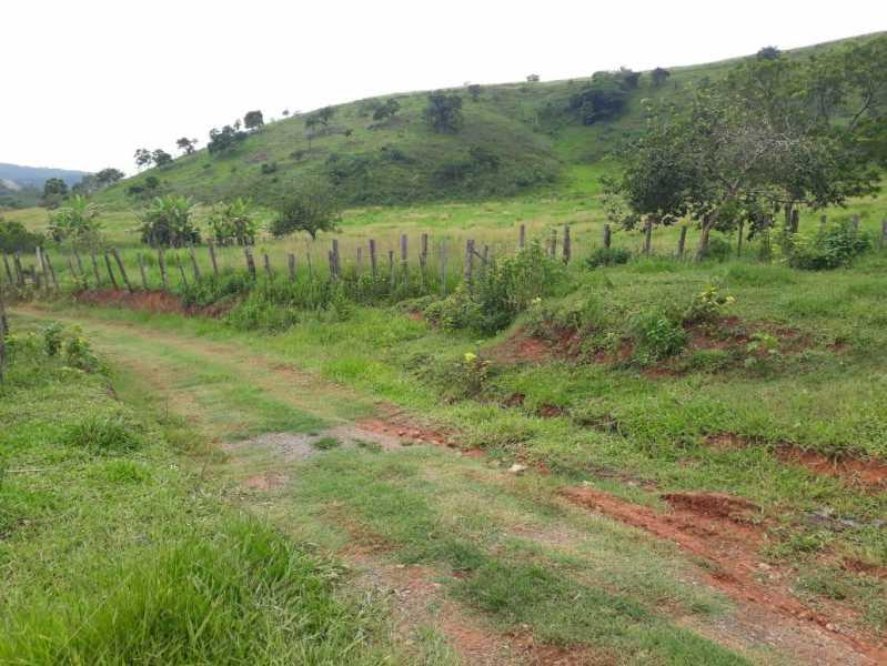 unnamed 2 - Fazenda à venda Piraúba, Muriaé - R$ 2.000.000 - MTFA00001 - 3