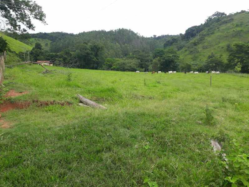 unnamed 3 - Fazenda à venda Piraúba, Muriaé - R$ 2.000.000 - MTFA00001 - 4