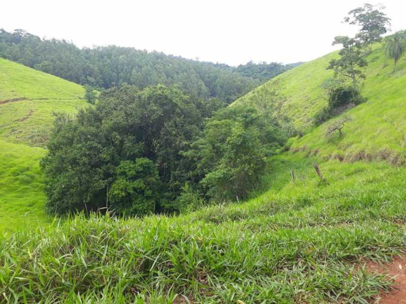 unnamed 10 - Fazenda à venda Piraúba, Muriaé - R$ 2.000.000 - MTFA00001 - 11
