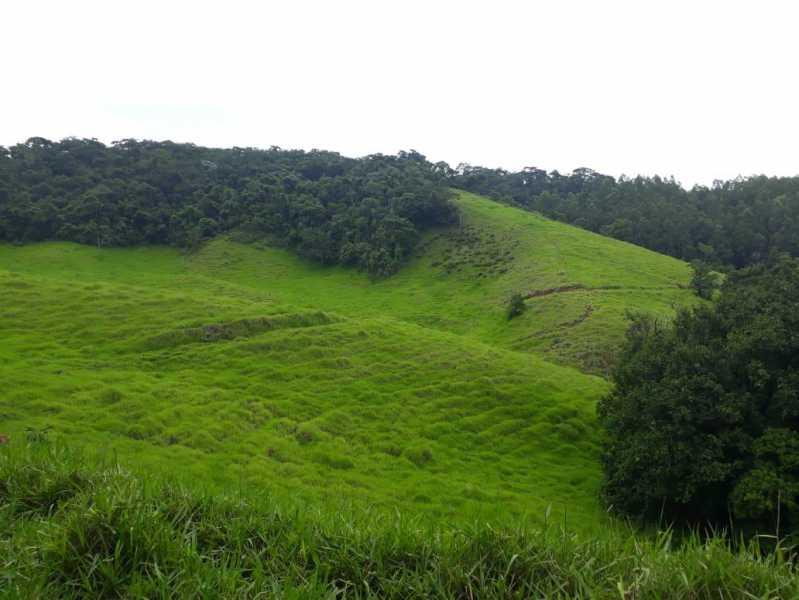 unnamed 11 - Fazenda à venda Piraúba, Muriaé - R$ 2.000.000 - MTFA00001 - 12