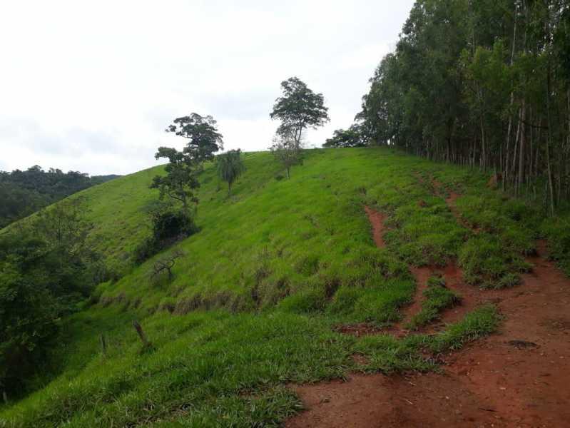 unnamed 14 - Fazenda à venda Piraúba, Muriaé - R$ 2.000.000 - MTFA00001 - 15