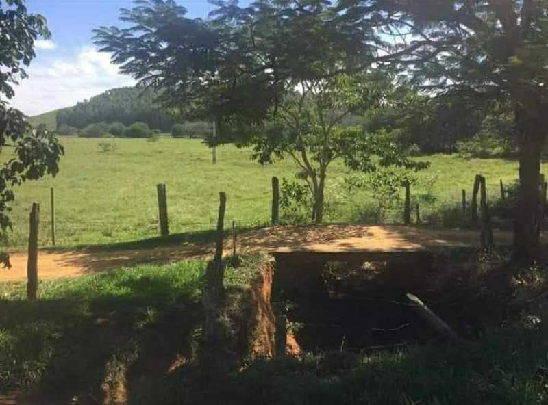 unnamed 5 - Sítio à venda Reduto, Barão de Monte Alto - R$ 250.000 - MTSI00007 - 7