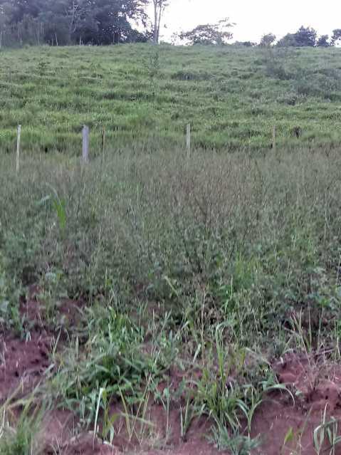 unnamed 1 - Chácara à venda São Francisco do Gloria, São Francisco do Glória - R$ 170.000 - MTCH30004 - 24