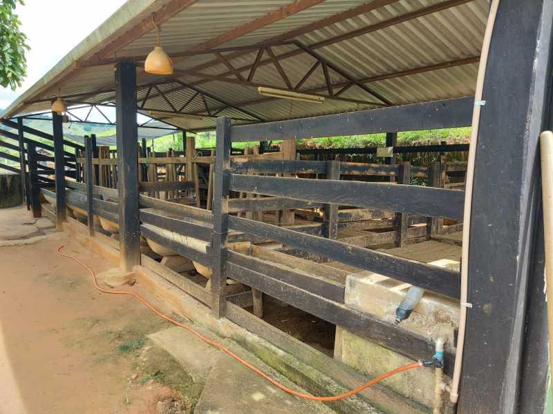 fb9a34c3-4f55-4644-8eb1-fb8d0d - Sítio à venda Zona Rural, Capetinga - R$ 450.000 - MTSI00008 - 18