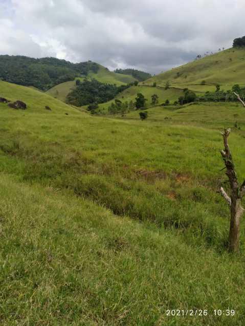 8 alqueires 3 - Sítio à venda Pirapanema, Muriaé - R$ 750.000 - MTSI00003 - 1