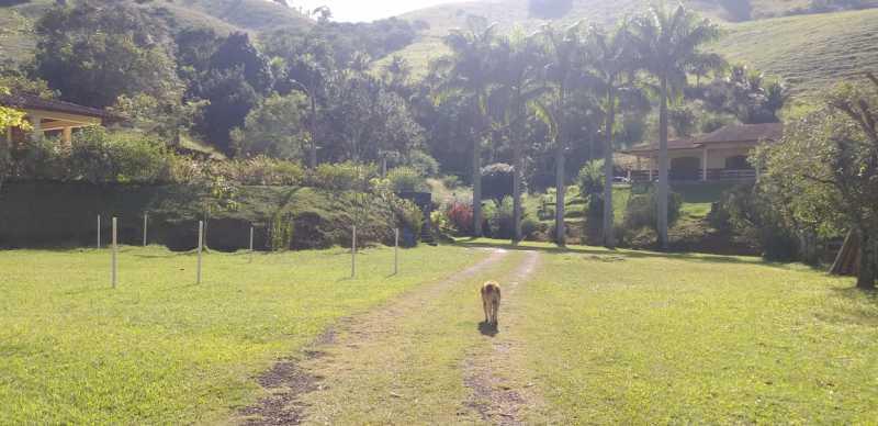 24943e92-8613-4a84-a388-2f2321 - Sítio à venda Zona Rural, Miradouro - R$ 1.100.000 - MTSI00005 - 16