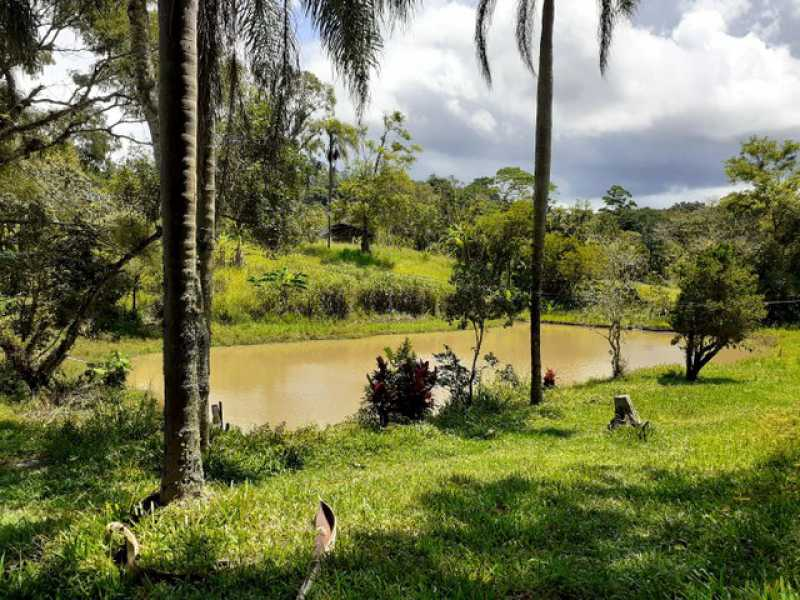 255147870809745 - Sítio à venda Taiacupeba, Mogi das Cruzes - R$ 970.000 - BISI10001 - 11