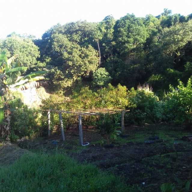 73a6ec01-f694-4985-a7d8-4dbb12 - Chácara à venda Rio Acima, Biritiba-Mirim - R$ 550.000 - BICH30006 - 8