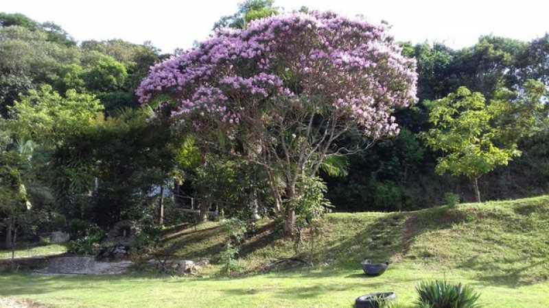 817174325560004 - Chácara 1705m² à venda Jundiapeba, Mogi das Cruzes - R$ 200.000 - BICH30009 - 18