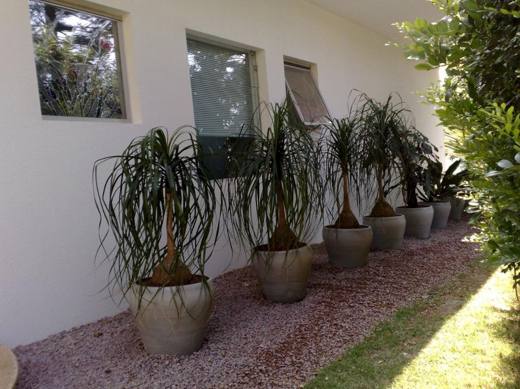 FOTO29 - Casa 5 quartos à venda Itatiba,SP - R$ 3.500.000 - CA0165 - 31