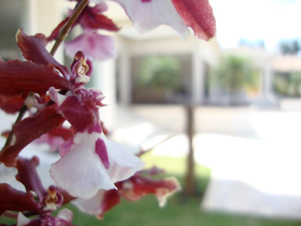 FOTO66 - Casa em Condomínio 4 quartos à venda Itatiba,SP - R$ 2.800.000 - VICN40008 - 68