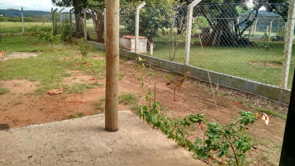 FOTO6 - Casa 2 quartos à venda Vinhedo,SP Centro - R$ 735.000 - CA1036 - 8