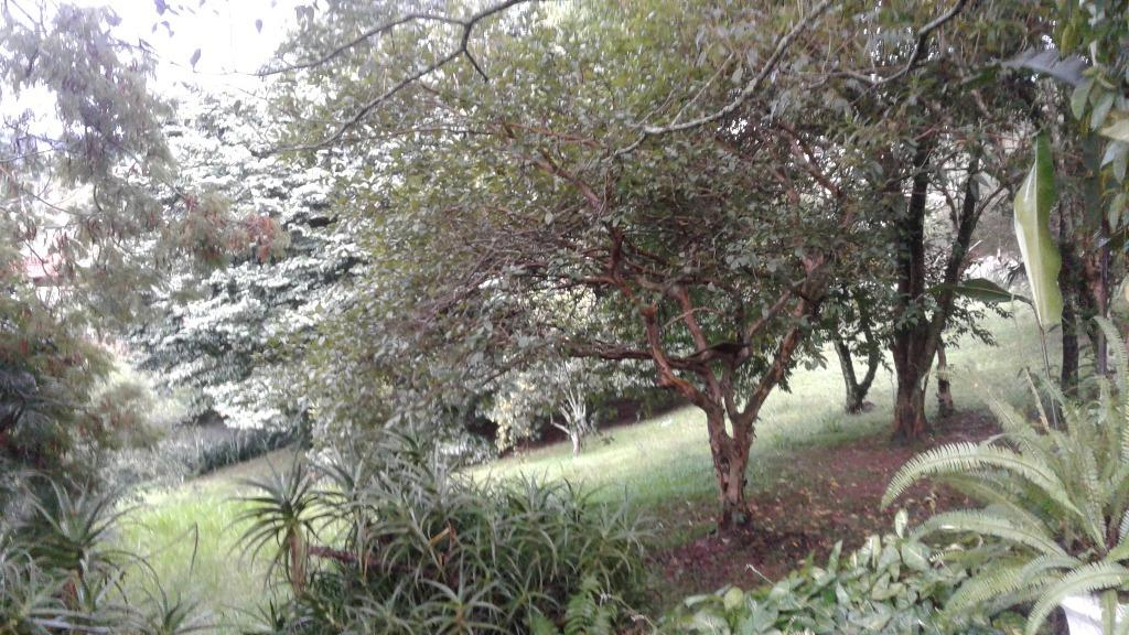FOTO51 - Chácara à venda Morungaba,SP Jardim Flaiban - R$ 2.300.000 - CH0216 - 53