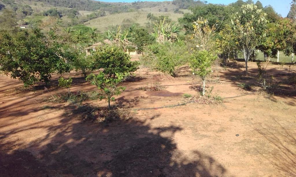 FOTO11 - Chácara à venda Monte Sião,MG Zona Rural - R$ 350.000 - CH0241 - 13