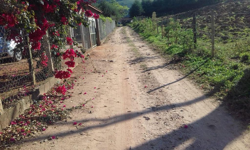 FOTO4 - Chácara à venda Monte Sião,MG Zona Rural - R$ 350.000 - CH0241 - 6