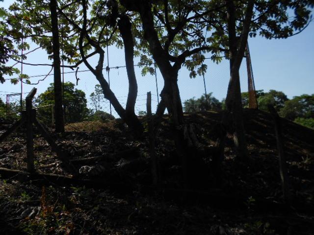 FOTO44 - Chácara à venda Itatiba,SP - R$ 1.200.000 - CH0270 - 46