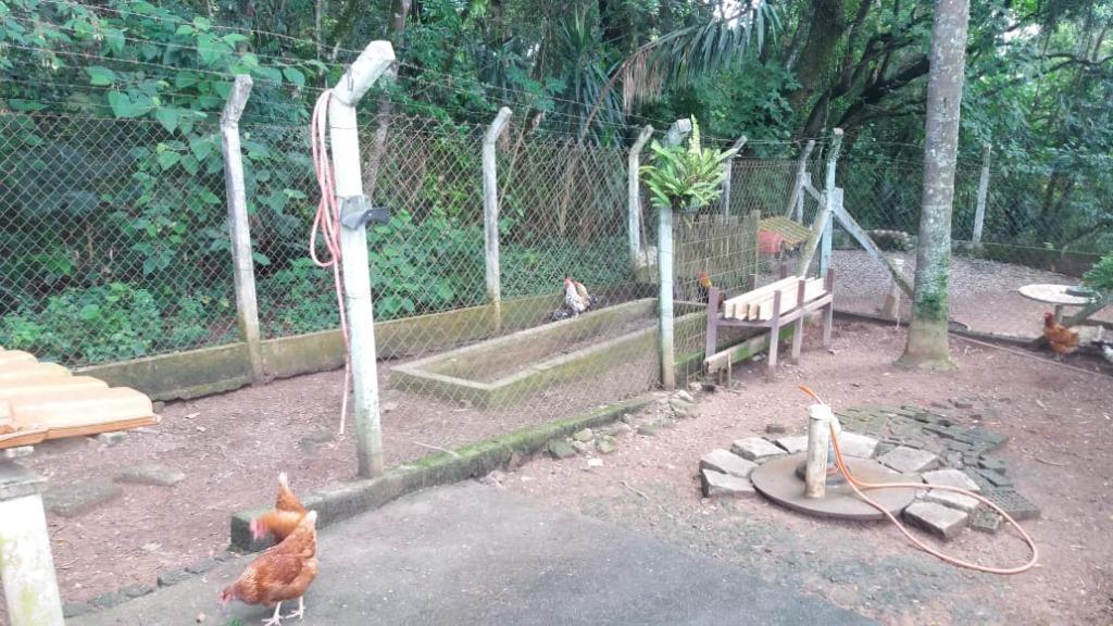 FOTO26 - Chácara à venda Jarinu,SP Alvorada - R$ 1.280.000 - CH0339 - 28