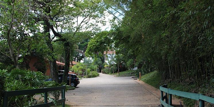 FOTO19 - Terreno Residencial à venda Morungaba,SP - R$ 469.000 - TE0641 - 11