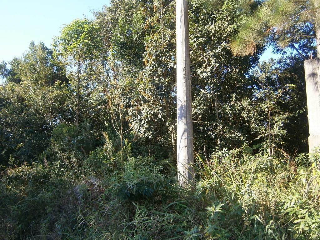 FOTO1 - Terreno à venda Itatiba,SP - R$ 120.000 - TE1142 - 3