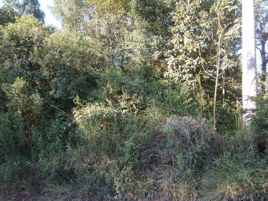 FOTO2 - Terreno à venda Itatiba,SP - R$ 120.000 - TE1142 - 4