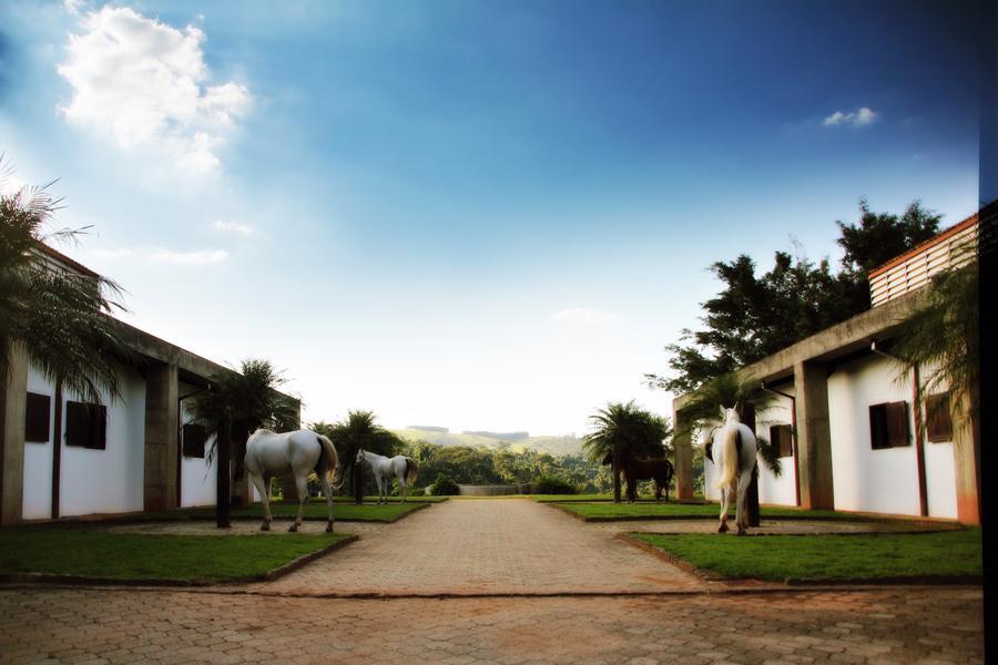 FOTO0 - Terreno à venda Itatiba,SP Capela do Barreiro - R$ 742.000 - TE1301 - 1