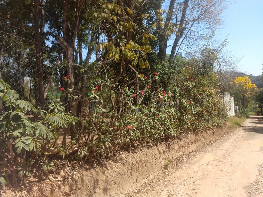 FOTO3 - Terreno à venda Itatiba,SP Pomar São Jorge - R$ 273.000 - TE1445 - 5