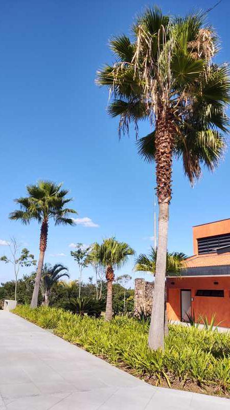 IMG_20210504_143411994_HDR - Terreno Residencial à venda Itatiba,SP - R$ 1.070.000 - TE1603 - 13