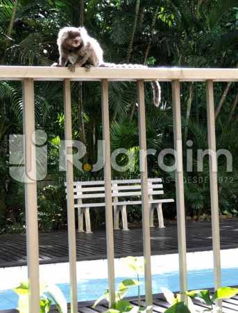 morador local  - Compra Venda Avaliação Imóveis Apartamento Lagoa 1 Quarto - LAAP10295 - 19