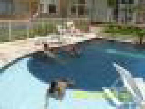 FOTO3 - Apartamento 2 quartos à venda Taquara, Rio de Janeiro - R$ 260.000 - RA20657 - 4