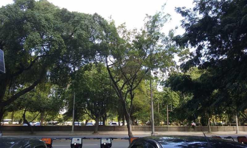 096169269408618 - Kitnet/Conjugado 28m² à venda Flamengo, Rio de Janeiro - R$ 295.000 - KFKI00096 - 19
