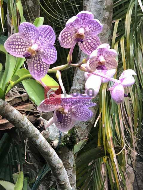 29 - Casa à venda Rua Zara,Jardim Botânico, Rio de Janeiro - R$ 6.450.000 - JBCA60017 - 30